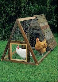 kippenren zelf maken
